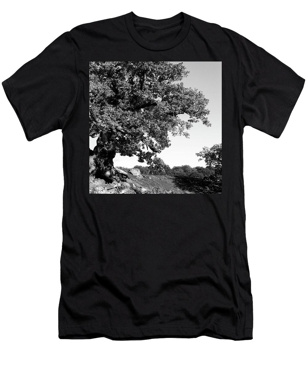 Woodland T-Shirt featuring the photograph Ancient Oak, Bradgate Park by John Edwards
