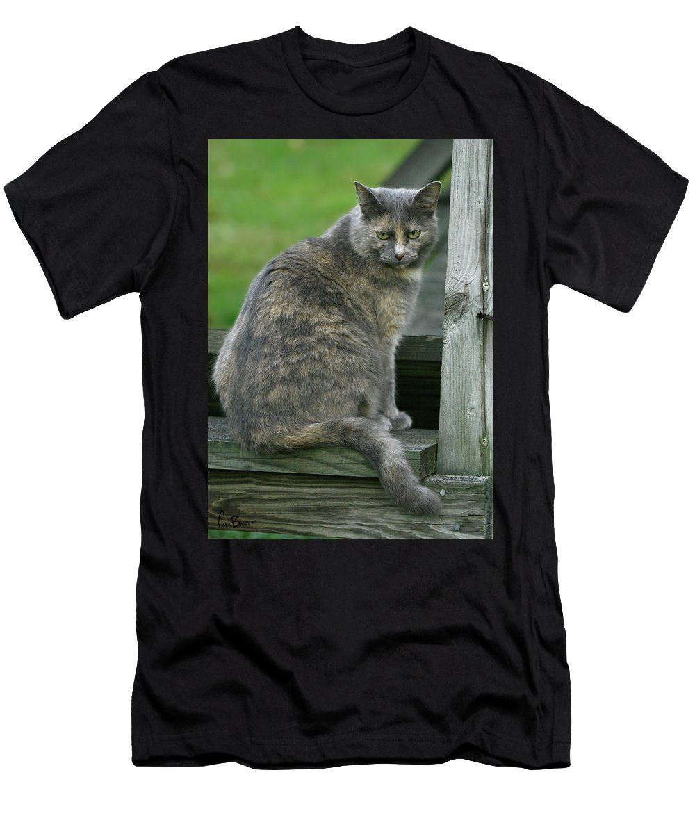 Photo Men's T-Shirt (Athletic Fit) featuring the photograph Angry Cat Named Bird by Cara Bevan