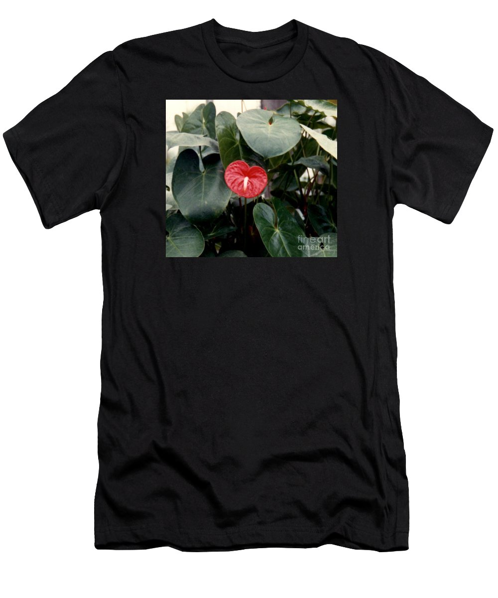 Anthurium Flower Prints Men's T-Shirt (Athletic Fit) featuring the photograph Anthurium Flower by Ruth Housley