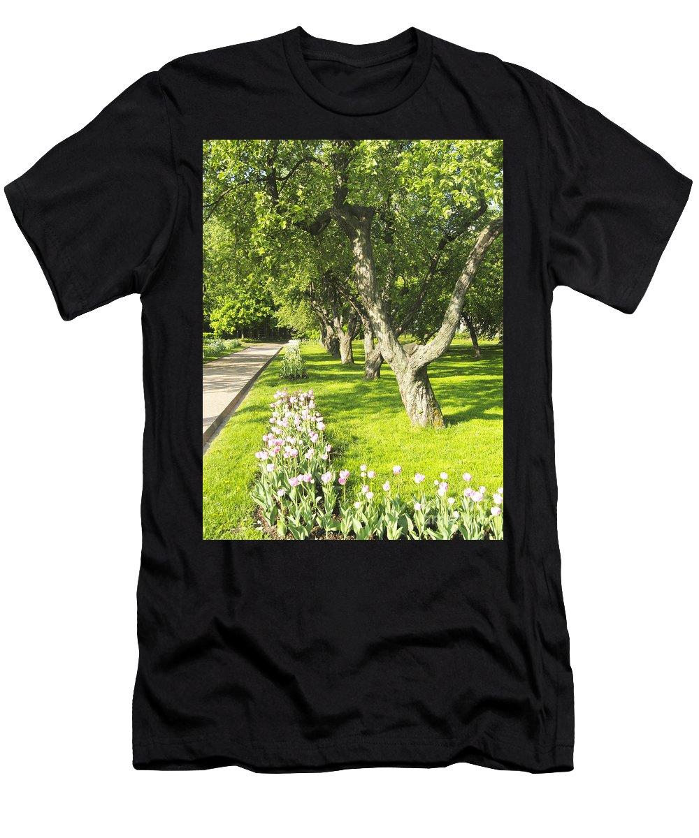 Summer Men's T-Shirt (Athletic Fit) featuring the photograph Apple Garden by Irina Afonskaya
