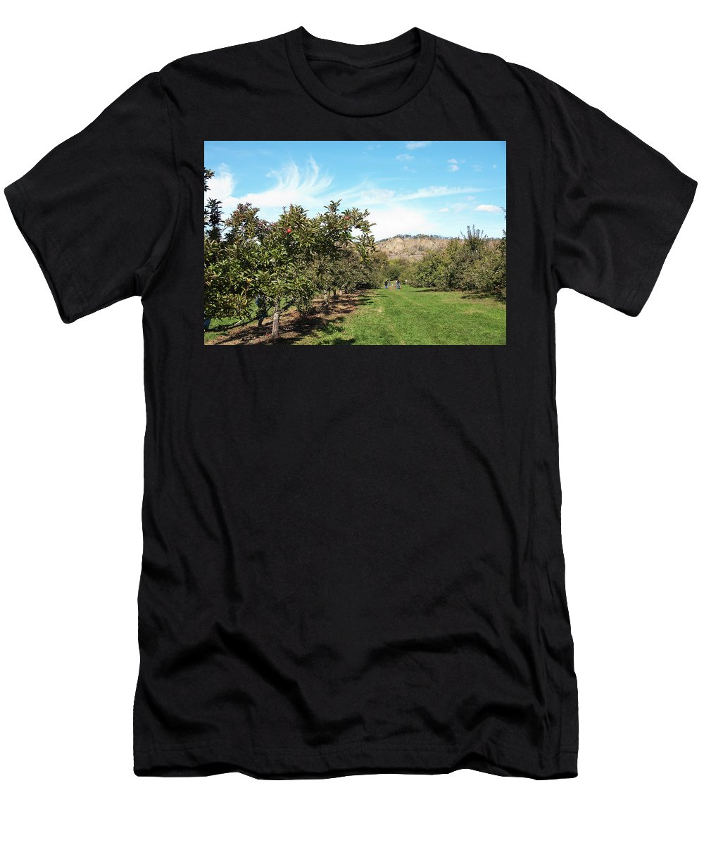 Landscape Men's T-Shirt (Athletic Fit) featuring the photograph Apple Picking by Jose Rojas