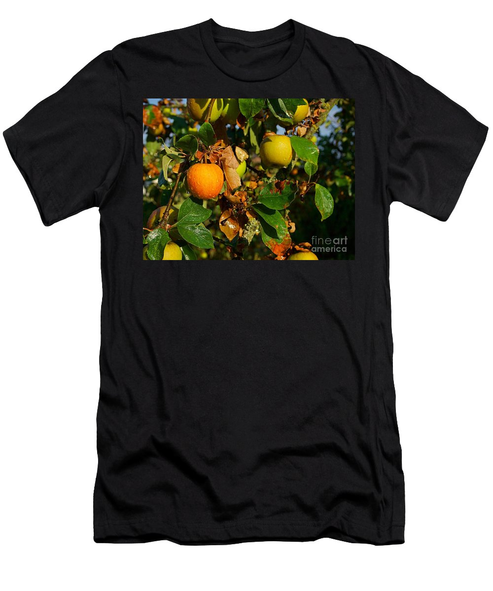 Apple Tree Men's T-Shirt (Athletic Fit) featuring the photograph Apple Tree by Christoph Beyhl