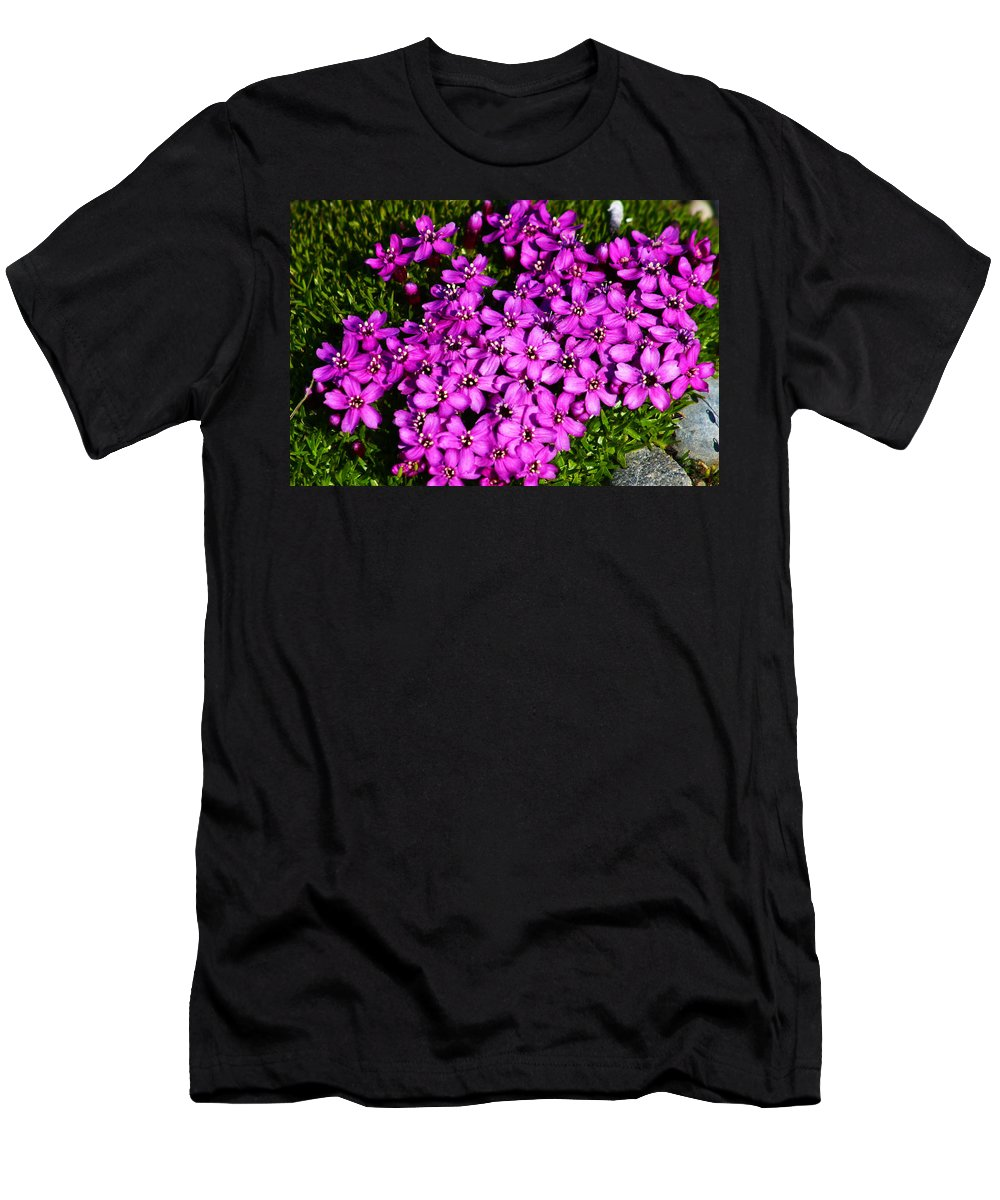 Arctic Men's T-Shirt (Athletic Fit) featuring the photograph Arctic Wild Flowers by Anthony Jones