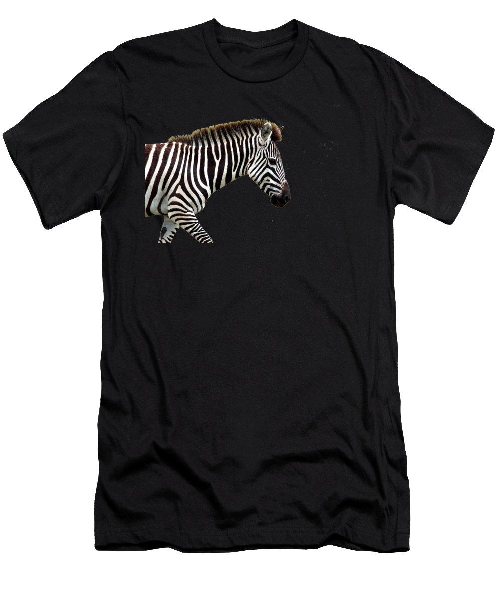 Zebra Men's T-Shirt (Athletic Fit) featuring the photograph Zebra by Aidan Moran