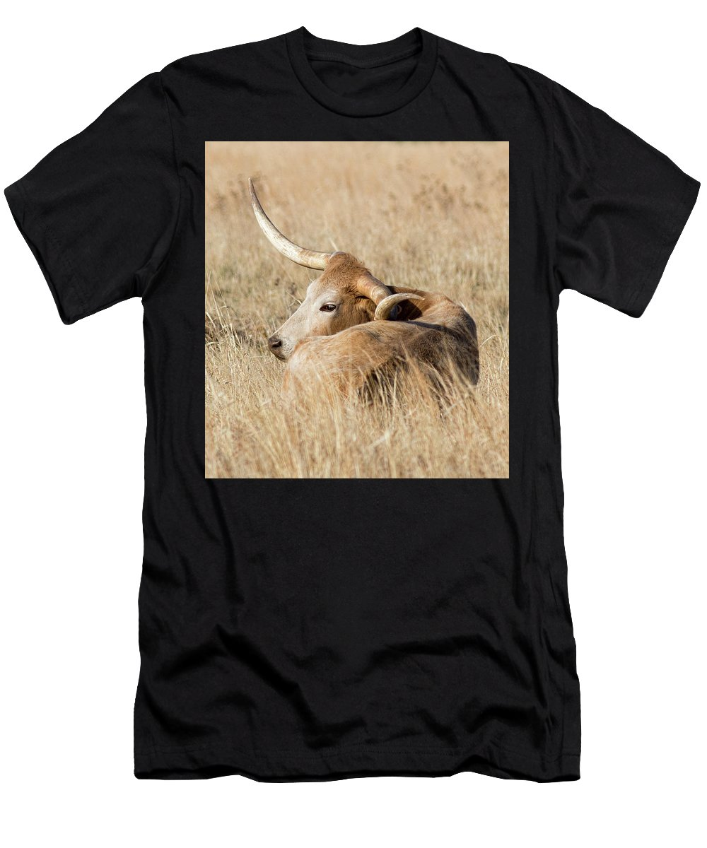 2017 April Men's T-Shirt (Athletic Fit) featuring the photograph Prairie Longhorn by Bill Kesler