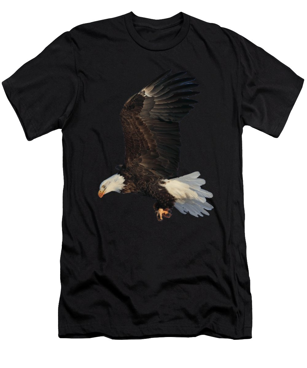 Bald Eagle Men's T-Shirt (Athletic Fit) featuring the photograph Fly By by Shane Bechler