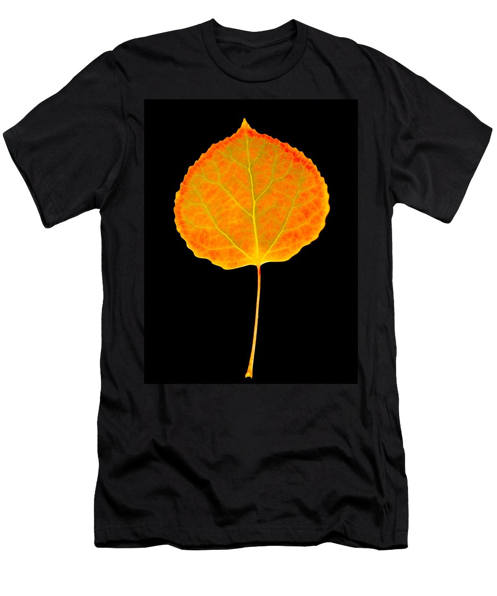 Leaf Men's T-Shirt (Athletic Fit) featuring the photograph Aspen Leaf by Marilyn Hunt