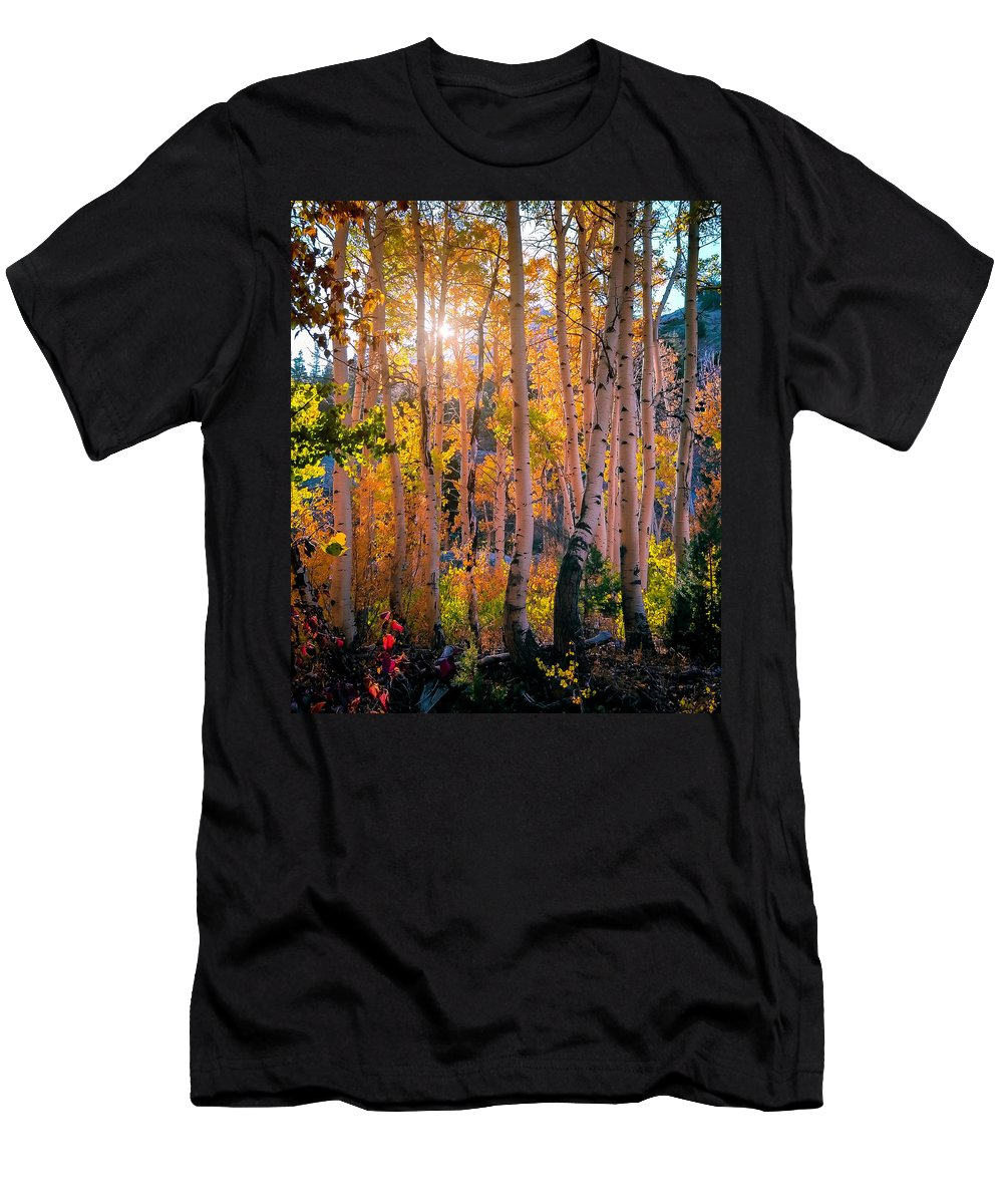 Aspen Men's T-Shirt (Athletic Fit) featuring the photograph Aspens In Fall Color by Jerome Obille