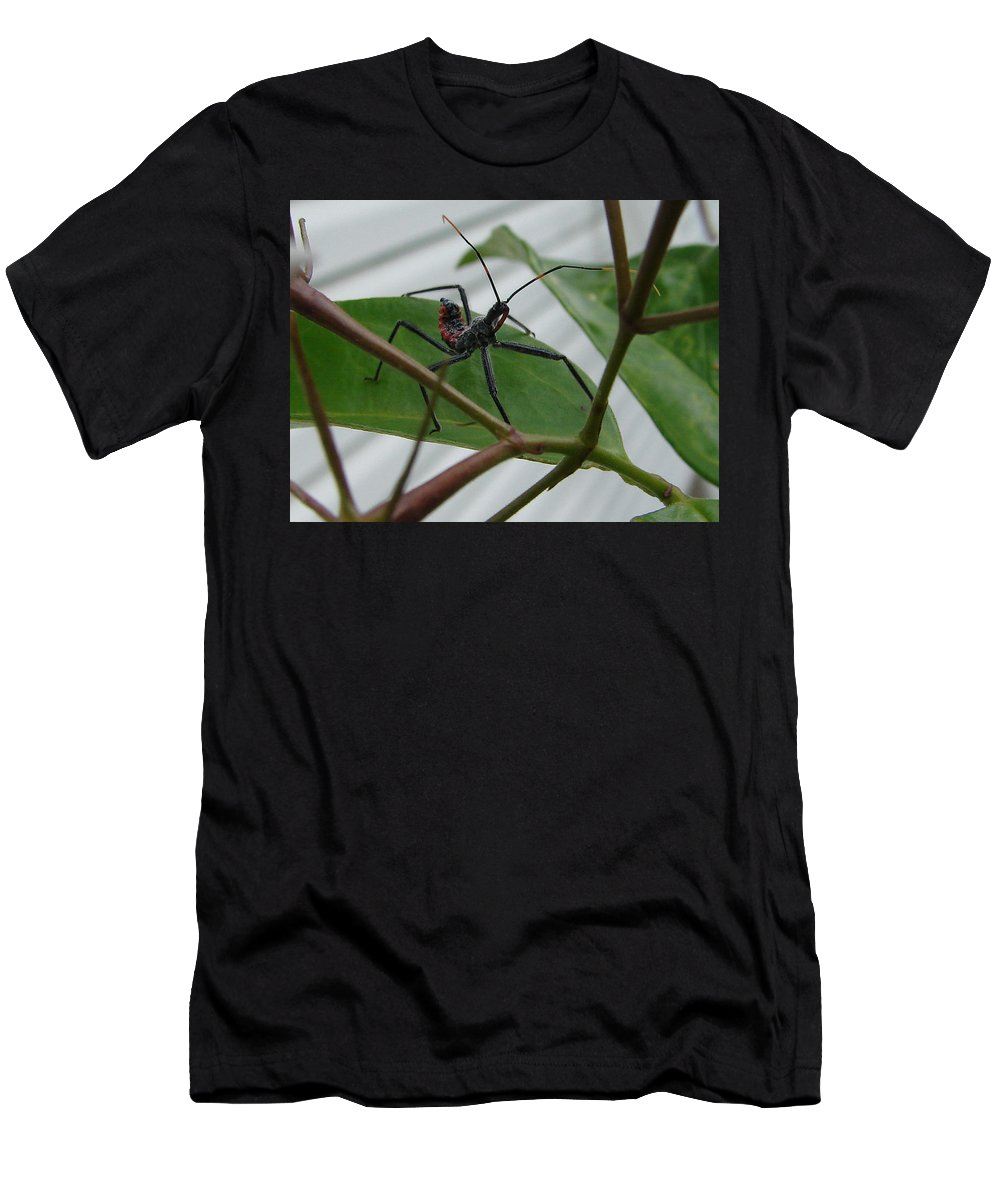 Insect Red Black Green Leaf Men's T-Shirt (Athletic Fit) featuring the photograph Assassin Bug by Luciana Seymour