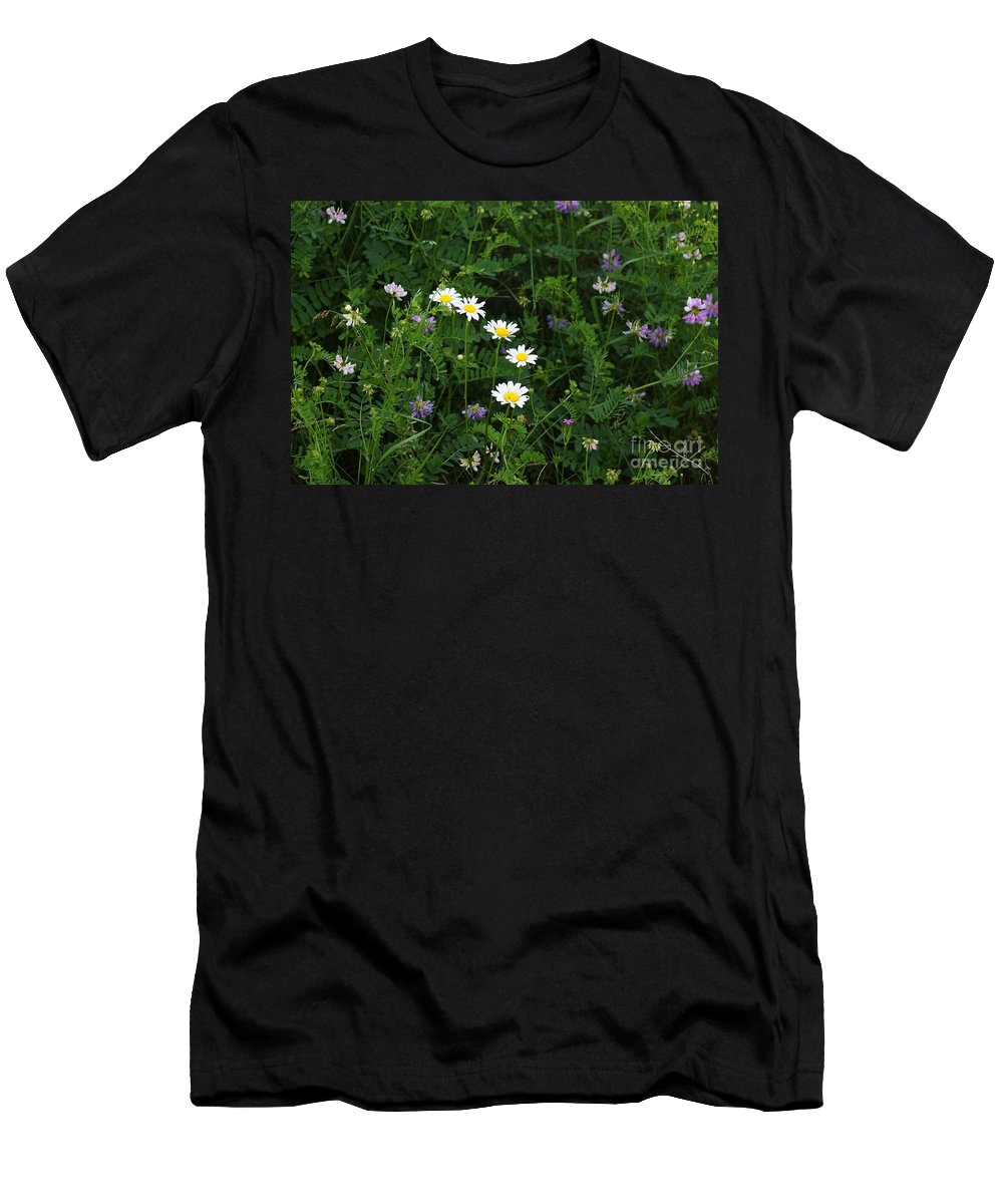 Flowers Men's T-Shirt (Athletic Fit) featuring the photograph Aster And Daisies by Judy Carr