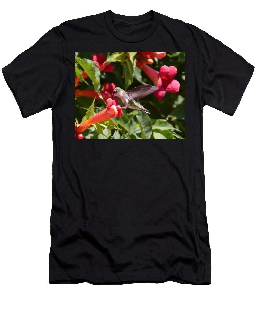 Humming Bird Men's T-Shirt (Athletic Fit) featuring the photograph Asweet Tooth by Robert Pearson