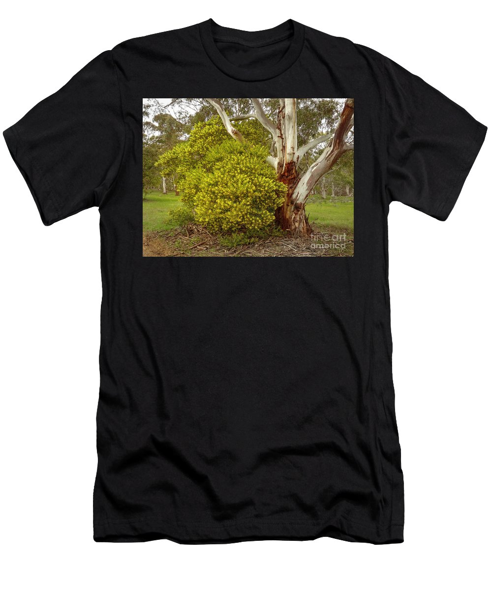 Australian Wattles Bush And Candlebark Gum Tree Men's T-Shirt (Athletic Fit) featuring the photograph Australian Wattles Bush And Candlebark Gum Tree by Teresa A and Preston S Cole Photography