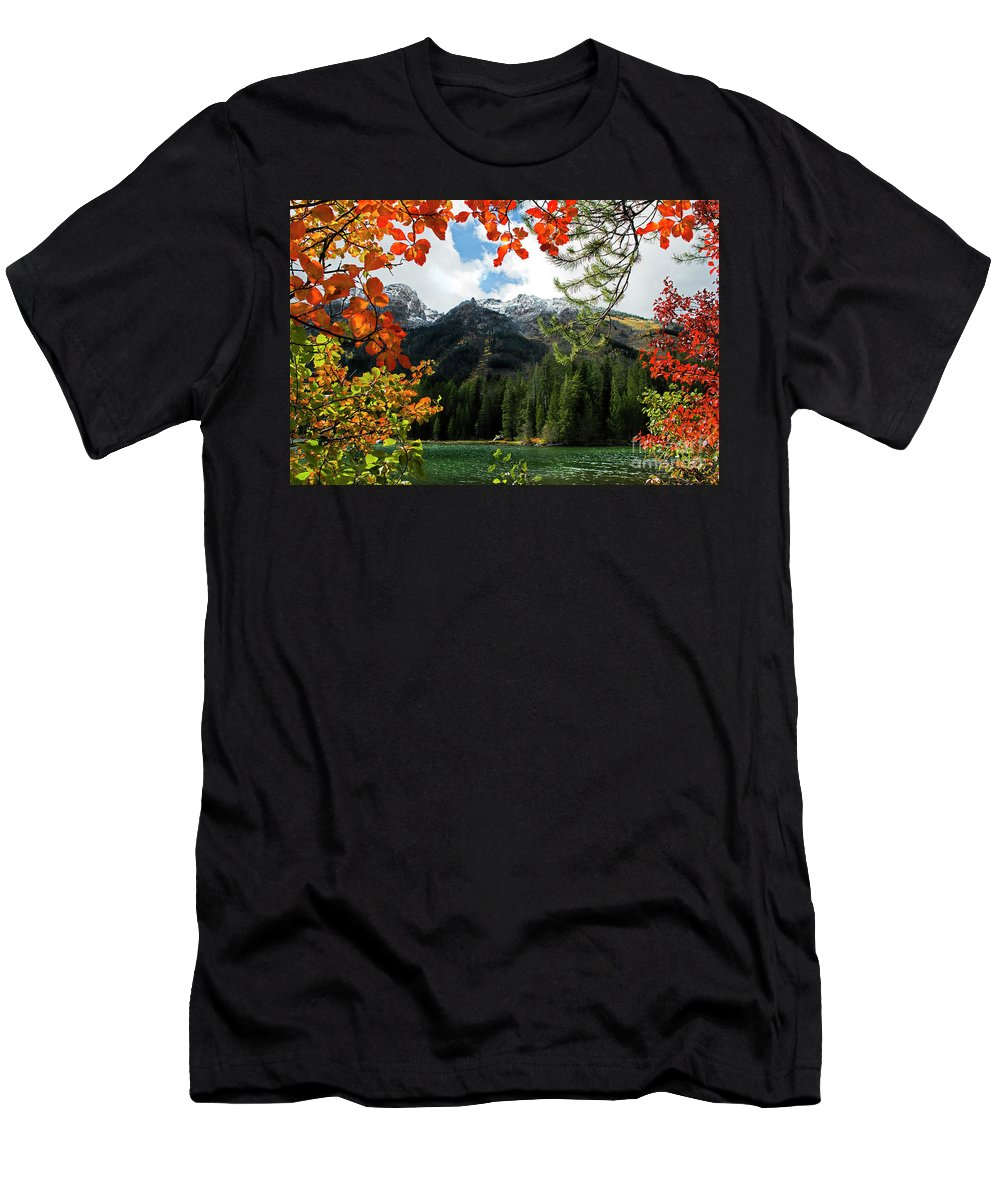 String Lake Men's T-Shirt (Athletic Fit) featuring the photograph Autumn At String Lake by Wildlife Fine Art