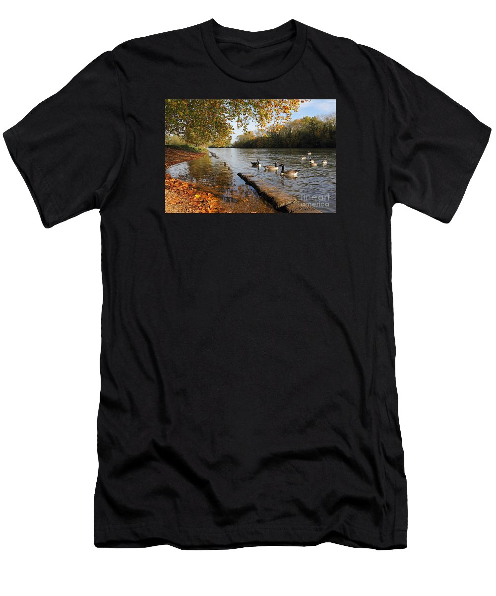 Autumn Colours At Sunbury On Thames Surrey Uk River Leaves The Surrey Countryside Men's T-Shirt (Athletic Fit) featuring the photograph Autumn Colours At Sunbury On Thames Surrey Uk by Julia Gavin