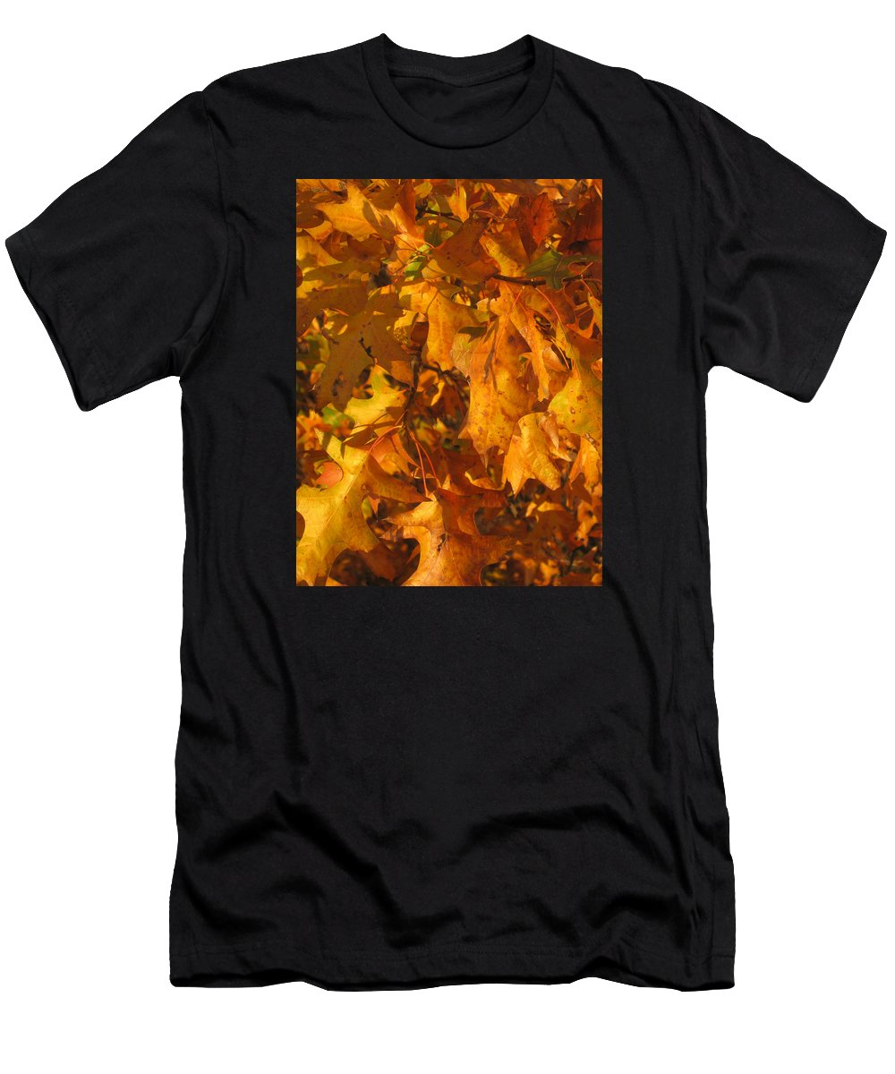 Autumn Men's T-Shirt (Athletic Fit) featuring the photograph Autumn Gold by Carolyn Jacob