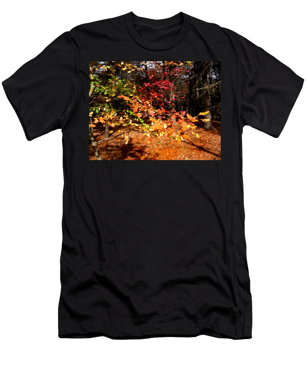 Autumn Men's T-Shirt (Athletic Fit) featuring the painting Autumn Hues by Paul Sachtleben