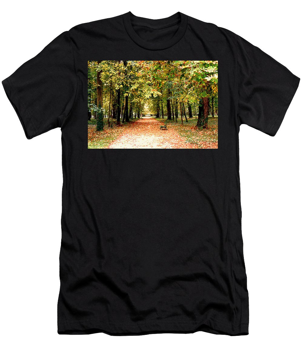 Autumn Men's T-Shirt (Athletic Fit) featuring the photograph Autumn In The Park by Nancy Mueller