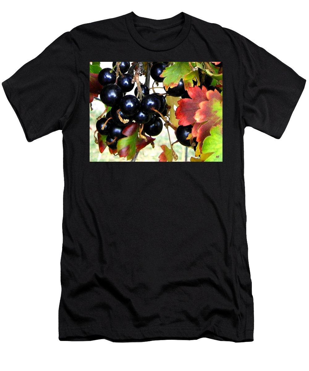 Autumn Men's T-Shirt (Athletic Fit) featuring the photograph Autumn Jostaberries by Will Borden