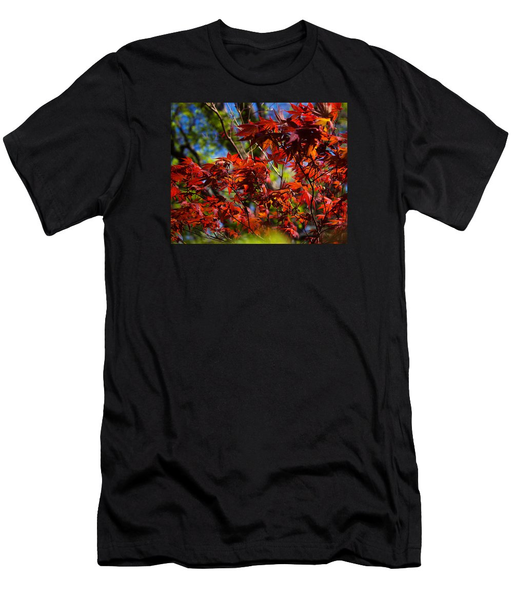 Autumn Men's T-Shirt (Athletic Fit) featuring the photograph Autumn Leaves by Paul Gibson