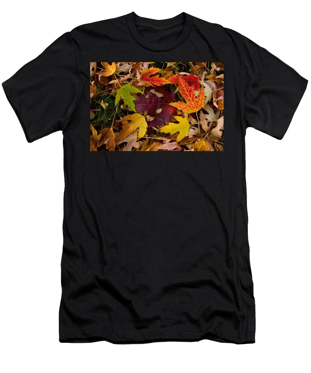 Leaves Men's T-Shirt (Athletic Fit) featuring the photograph Autumn Leaves by James BO Insogna