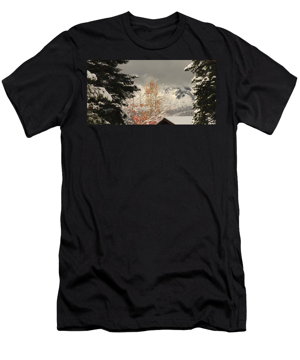 Changing Seasons Men's T-Shirt (Athletic Fit) featuring the photograph Autumn Leaves Winter Snow by Diane Zucker
