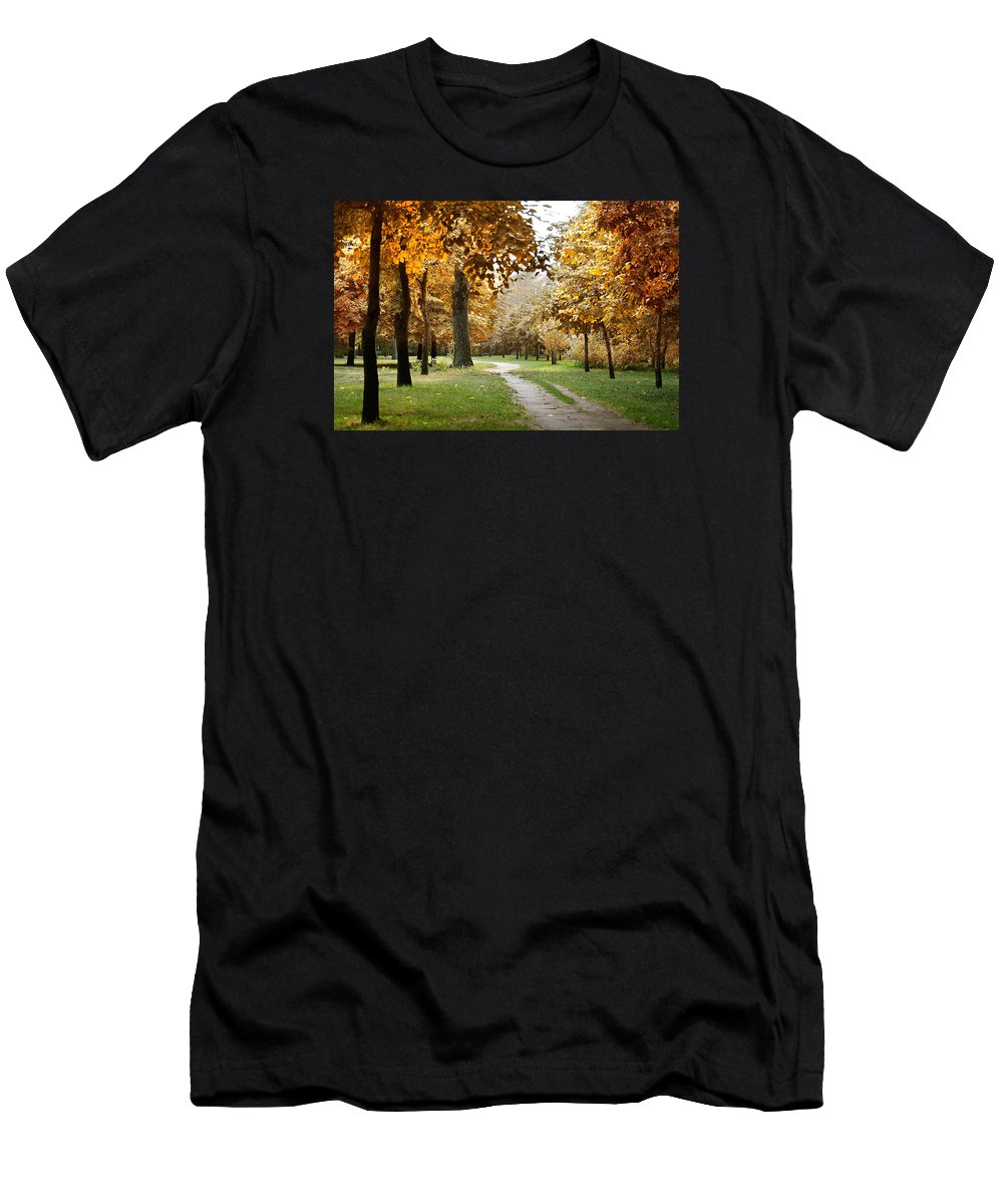 Fall Men's T-Shirt (Athletic Fit) featuring the photograph Autumn by Masha Batkova