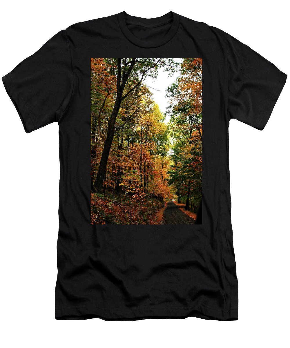 Autumn Men's T-Shirt (Athletic Fit) featuring the photograph Autumn Path by Lori Tambakis