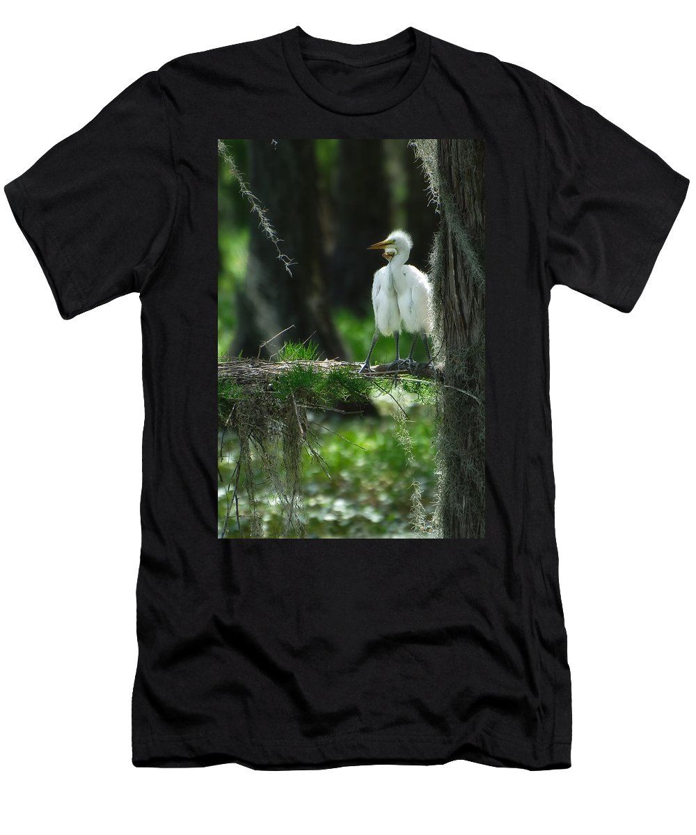 Egret Men's T-Shirt (Athletic Fit) featuring the photograph Baby Great Egrets With Nest by Rich Leighton