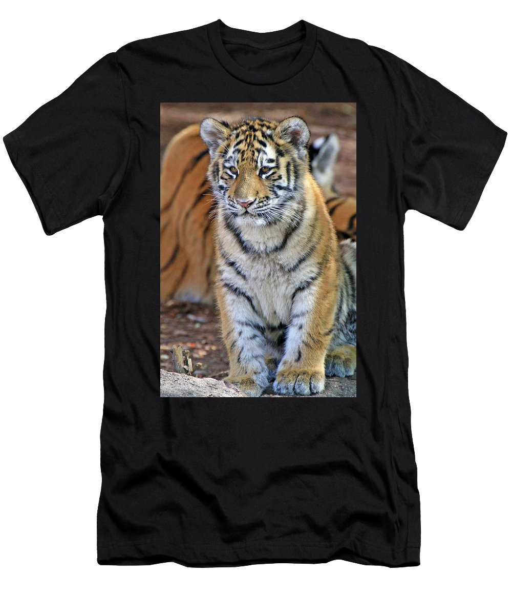 Tiger Men's T-Shirt (Athletic Fit) featuring the photograph Baby Stripes by Scott Mahon