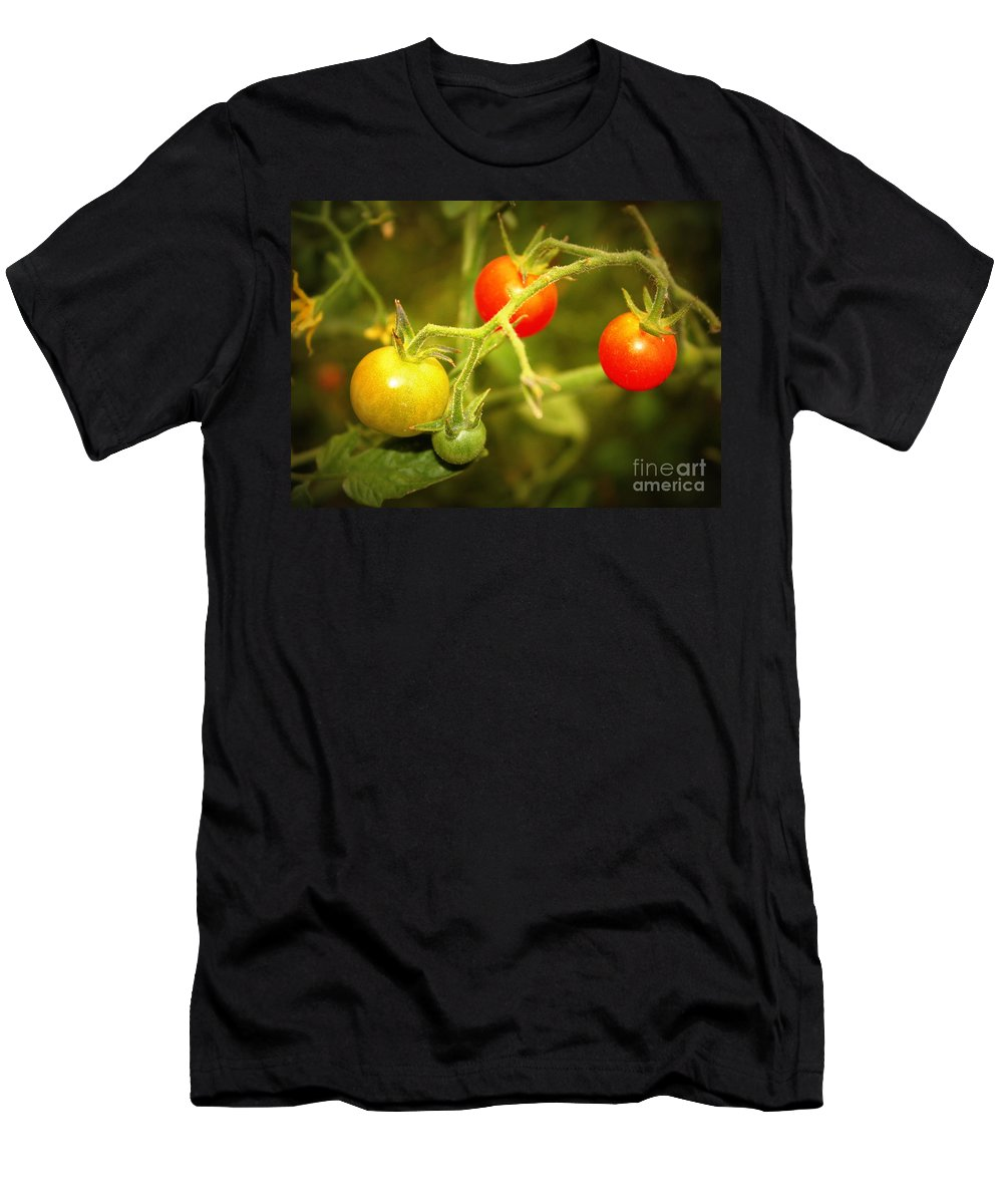Food Men's T-Shirt (Athletic Fit) featuring the photograph Backyard Garden Series - Cherry Tomatoes by Carol Groenen