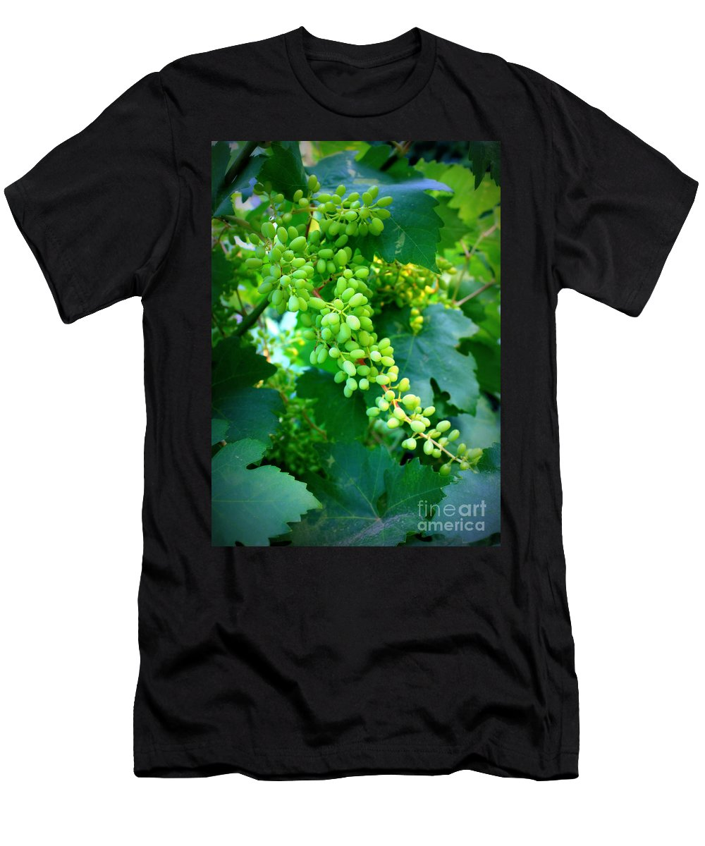 Grapes Men's T-Shirt (Athletic Fit) featuring the photograph Backyard Garden Series - Young Grapes by Carol Groenen