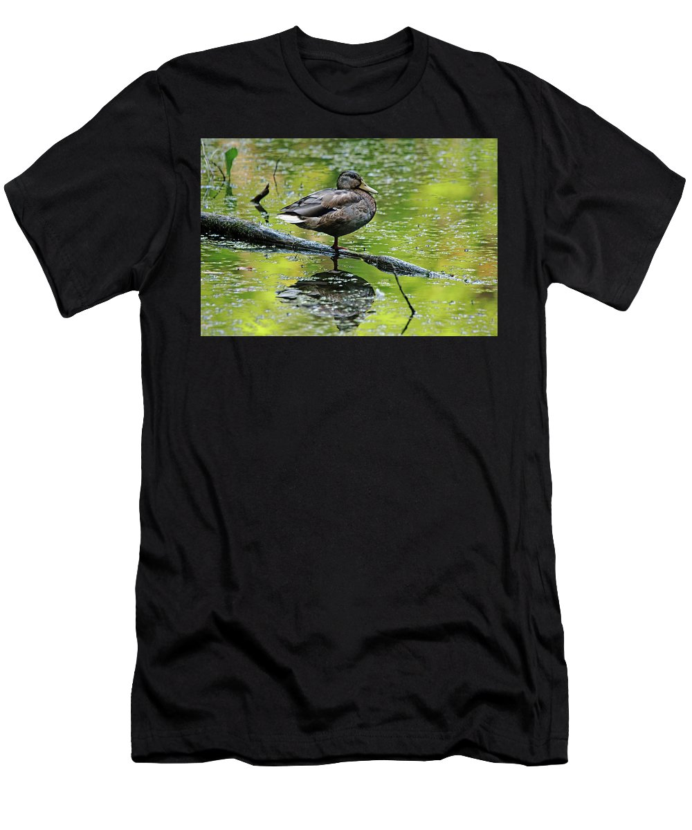 Mallard Men's T-Shirt (Athletic Fit) featuring the photograph Balance by Debbie Oppermann
