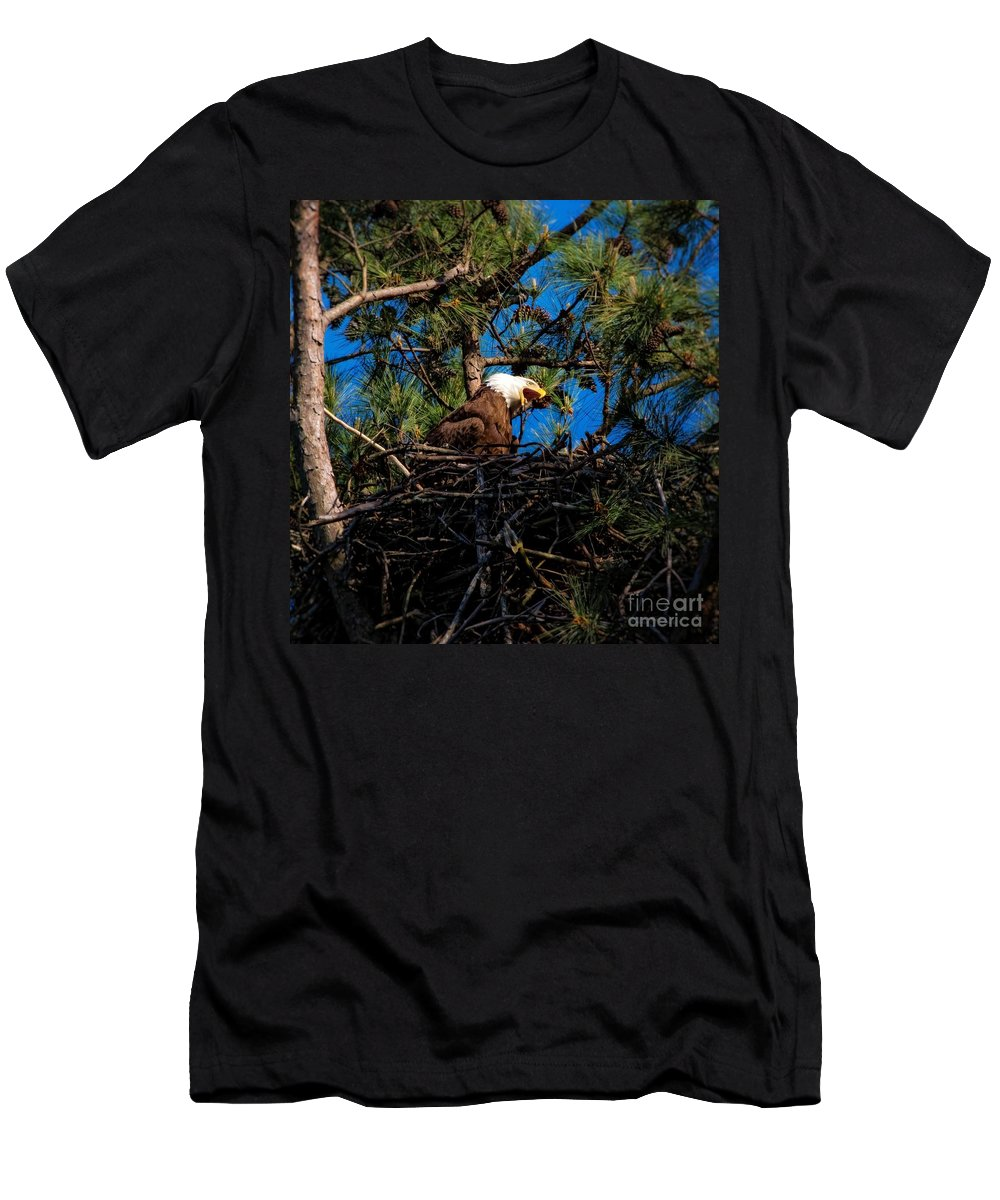 Bald Eagle In Nest Men's T-Shirt (Athletic Fit) featuring the photograph Bald Eagle In The Nest by Warrena J Barnerd