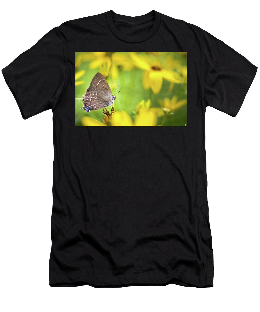Banded Men's T-Shirt (Athletic Fit) featuring the photograph Banded Hairstreak On Coreopsis by Jeanette Fellows