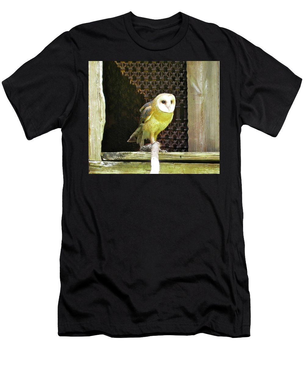 Bird Men's T-Shirt (Athletic Fit) featuring the photograph Barn Owl On The Prowl by Maureen Beaudet