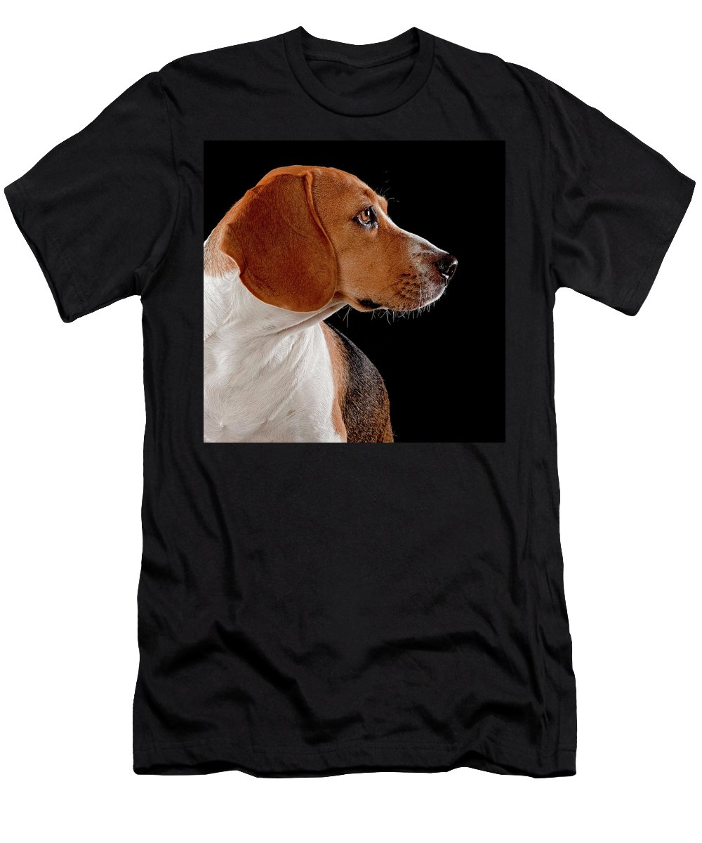 Beagle Men's T-Shirt (Athletic Fit) featuring the photograph Beagle by Hugo Orantes