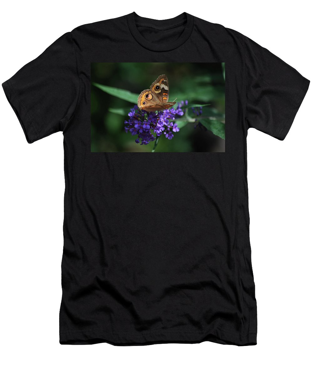 Butterfly Men's T-Shirt (Athletic Fit) featuring the photograph Beautiful Buckeye by Lori Tambakis