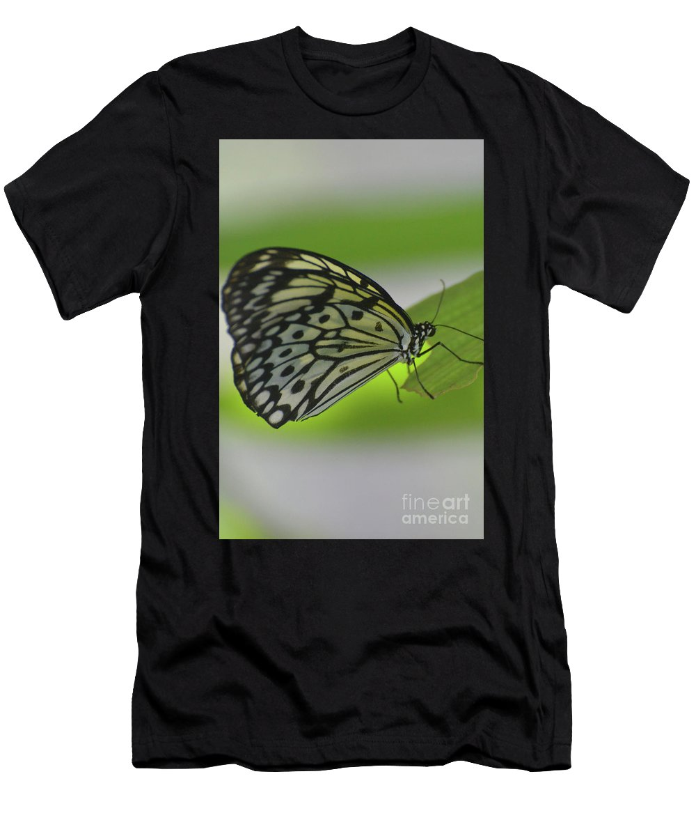 Tree-nymph Men's T-Shirt (Athletic Fit) featuring the photograph Beautiful Paper Kite Butterfly On A Green Leaf by DejaVu Designs