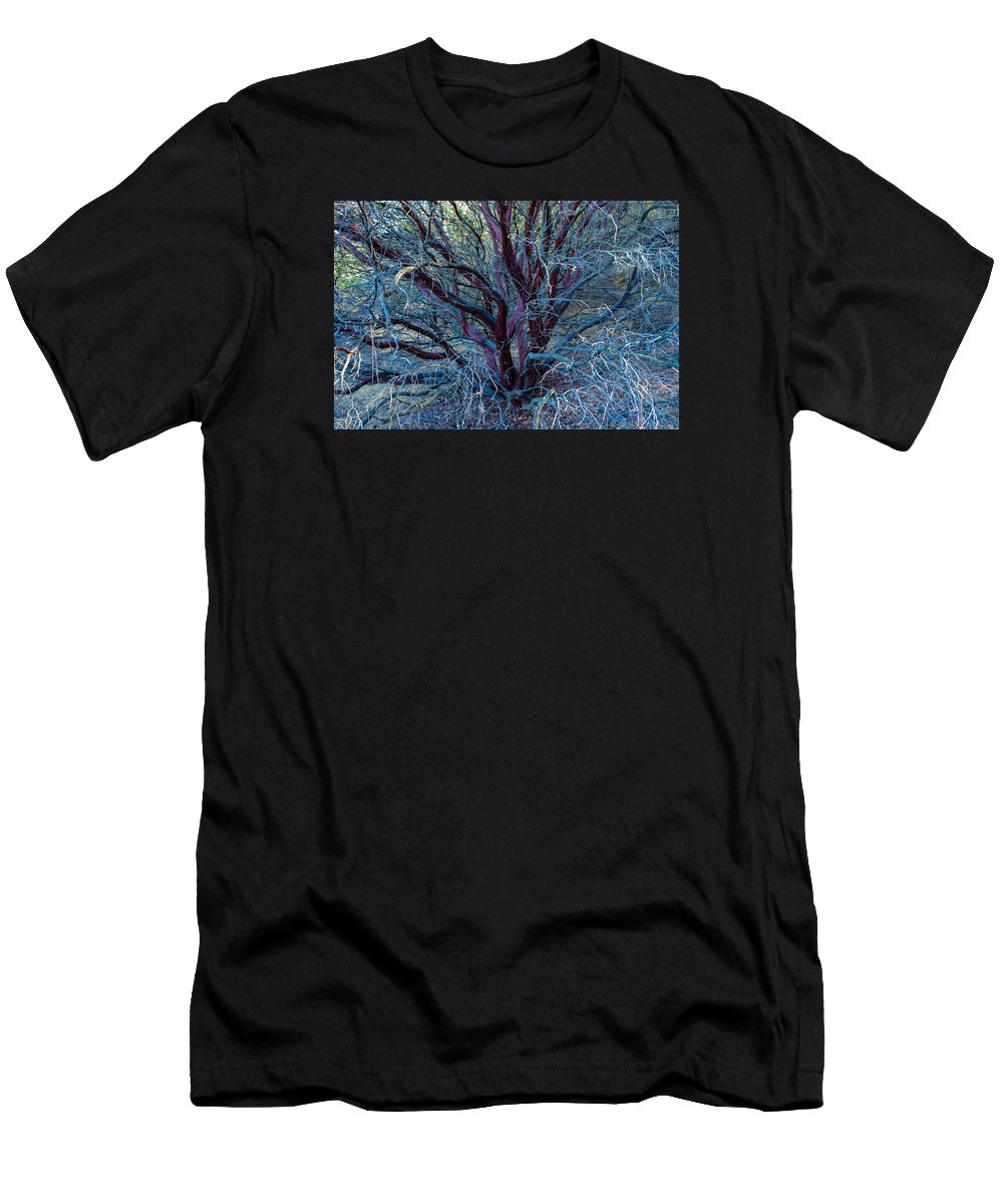 Tree Men's T-Shirt (Athletic Fit) featuring the photograph Beautiful Tree by Miranda Strapason