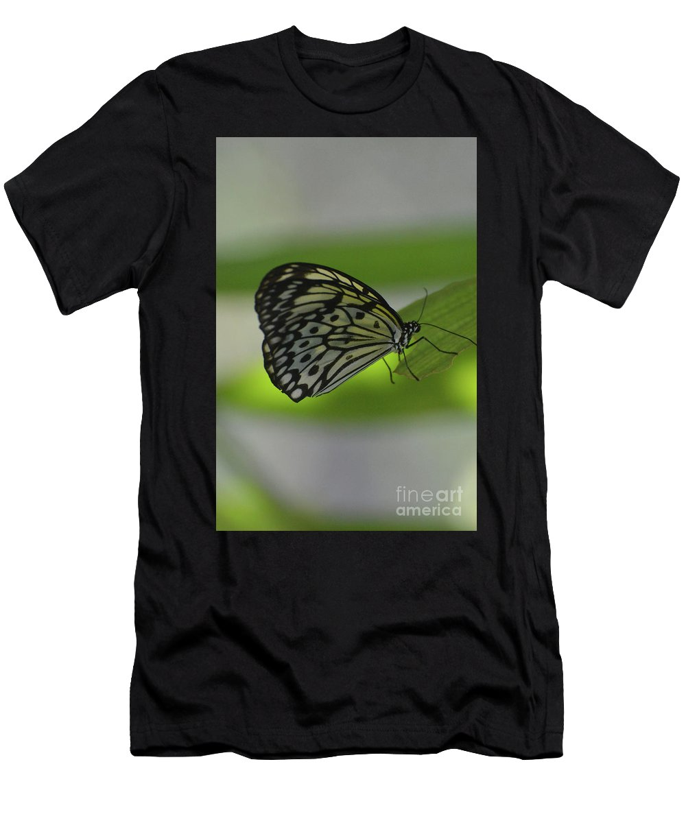 Tree-nymph Men's T-Shirt (Athletic Fit) featuring the photograph Beautiful White Tree Nymph Butterfly On A Leaf by DejaVu Designs
