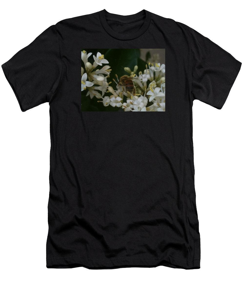 Bee Men's T-Shirt (Athletic Fit) featuring the photograph Bee And Small White Blossoms by Helen Orth