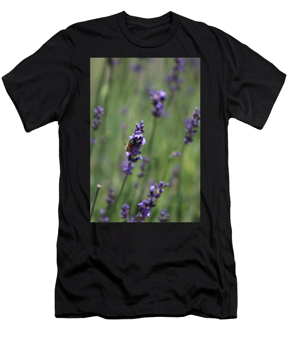 Deep Purple Lavender T-Shirt featuring the photograph Bee on Deep Purple Lavender Spike by Colleen Cornelius
