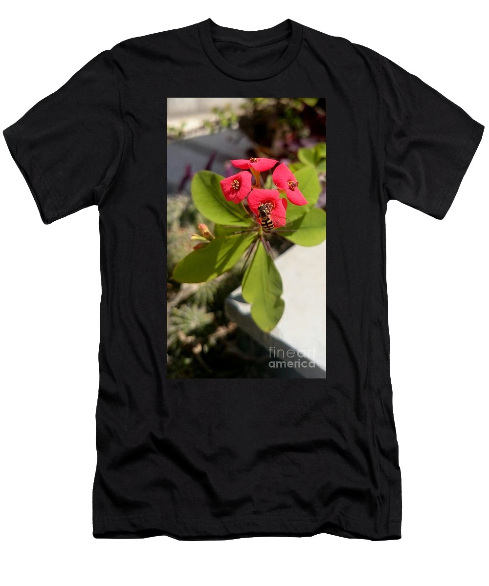 Bee Red Rose Green Plants Insect Yellow Black Men's T-Shirt (Athletic Fit) featuring the photograph Bee Red Rose by Mina Milad