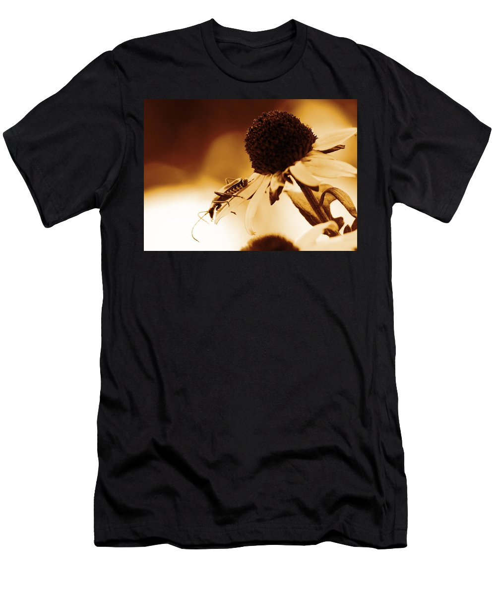 Leatherwing Men's T-Shirt (Athletic Fit) featuring the photograph Beetle And Black Eyed Susan by Angela Rath