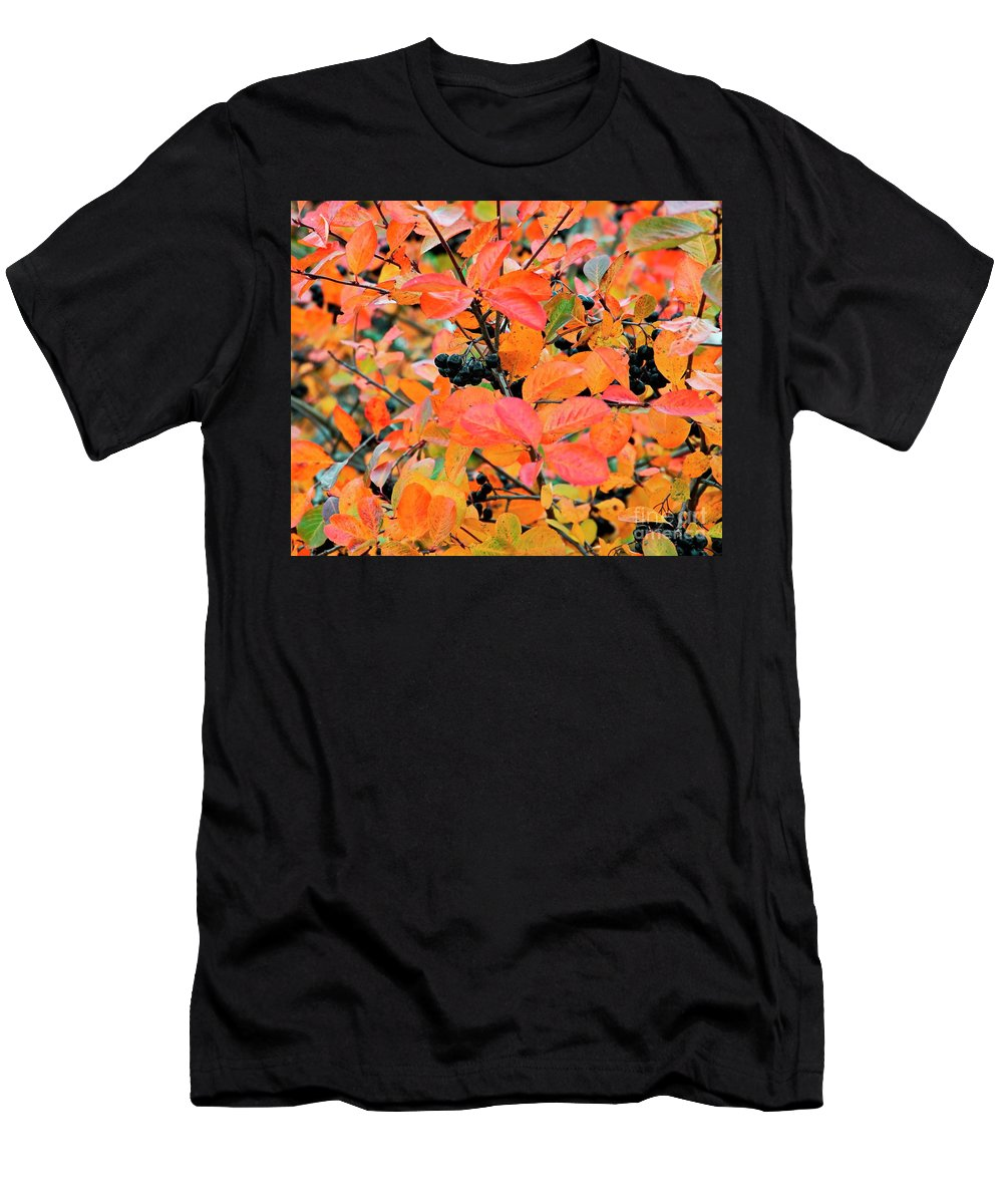 Aronia Mitschurinii Men's T-Shirt (Athletic Fit) featuring the photograph Berry Aronia by Esko Lindell
