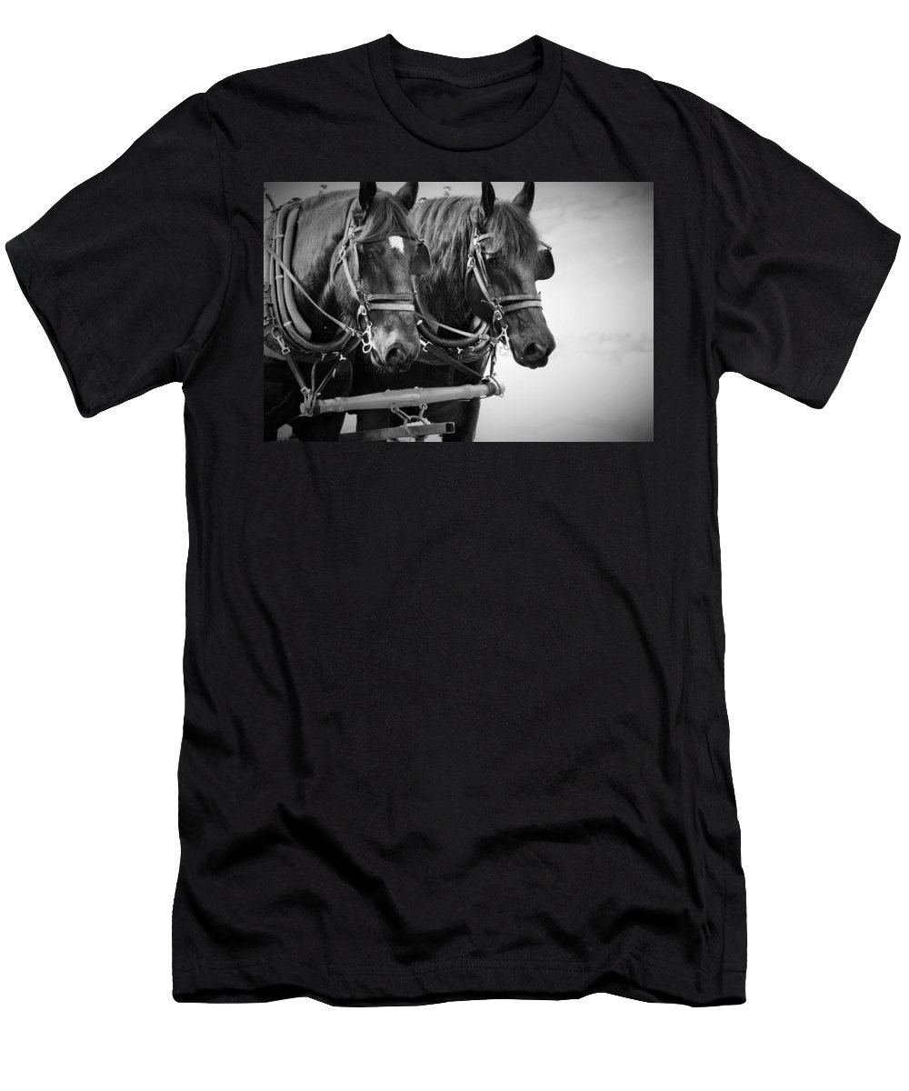 Percherons Men's T-Shirt (Athletic Fit) featuring the photograph Big Love by Emma Twamley
