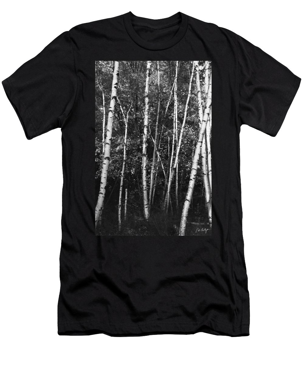 Autumn Men's T-Shirt (Athletic Fit) featuring the photograph Birch Trees by Phill Doherty