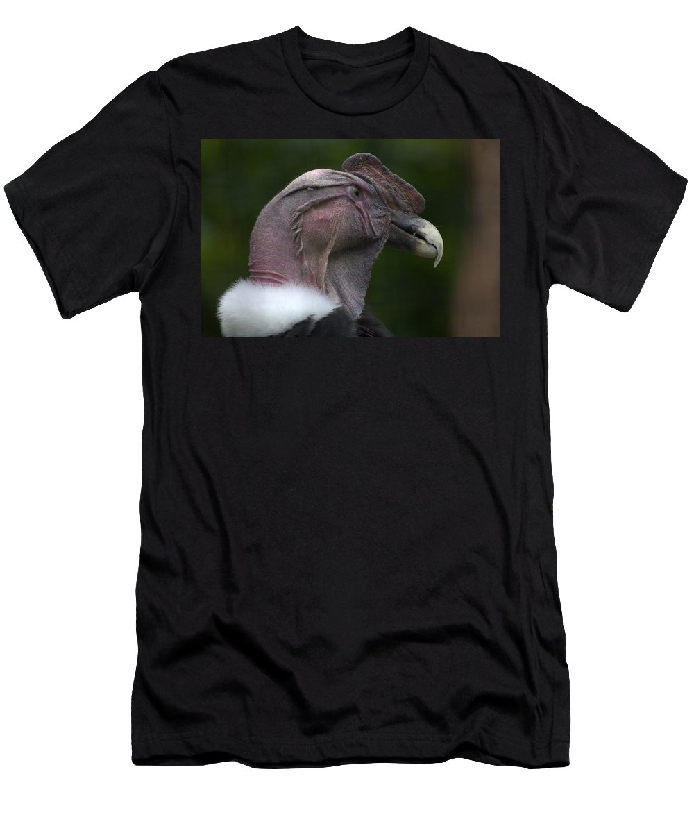 Men's T-Shirt (Athletic Fit) featuring the photograph Bird by Aaron Parker