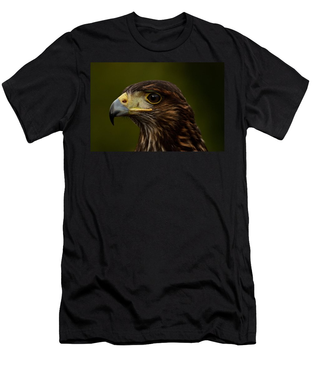 Bird Men's T-Shirt (Athletic Fit) featuring the photograph Bird Of Prey by Dawn OConnor
