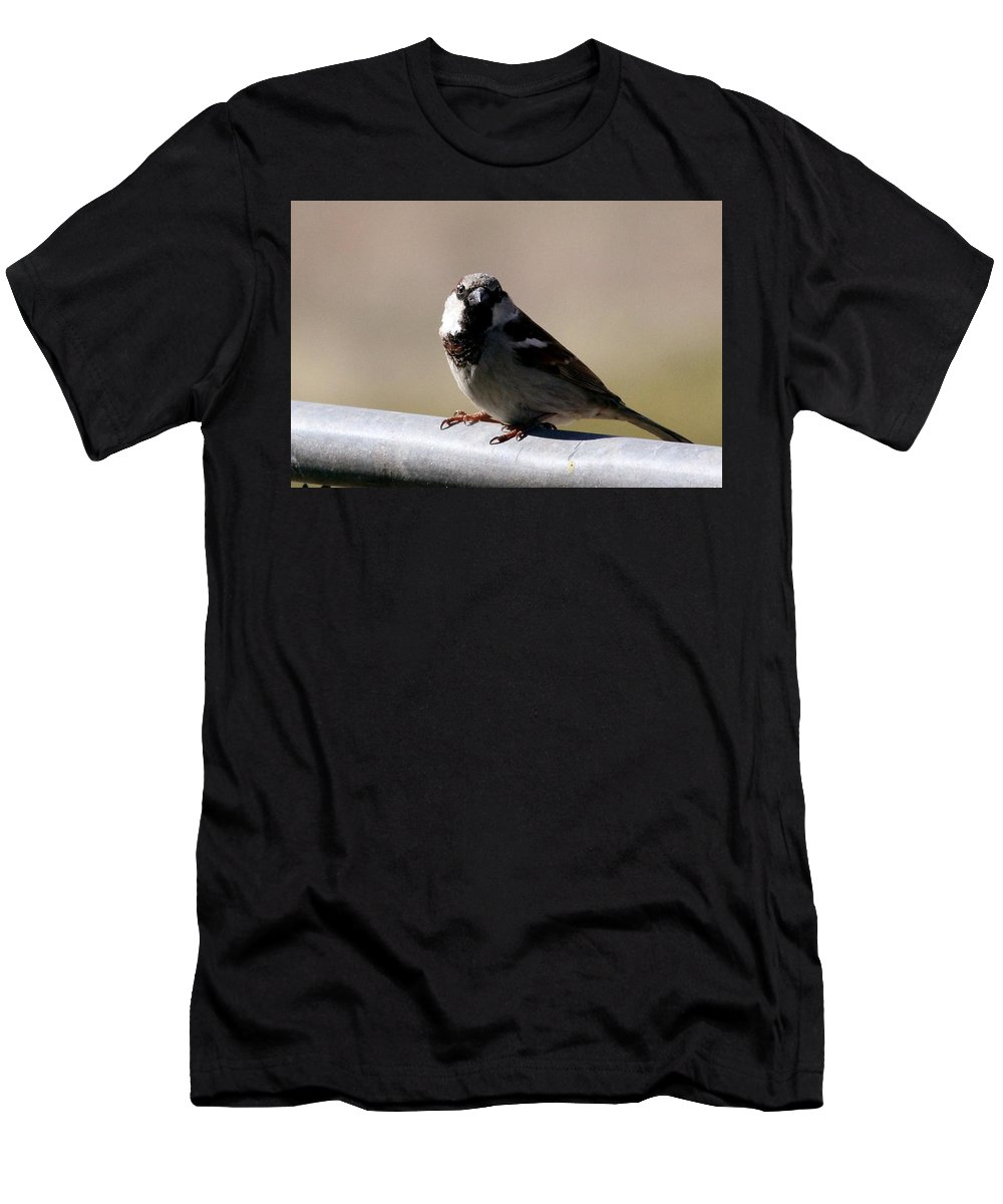 Nature Men's T-Shirt (Athletic Fit) featuring the photograph Bird On A Fence by Kevin Wright